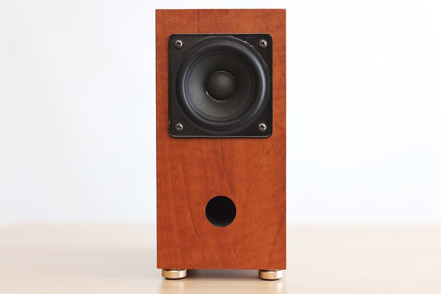 Speaker Insulator.