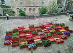 Girona Temps de Flors 2021