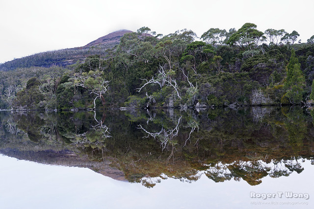 20210505-54-Reflections in Lake Rodway