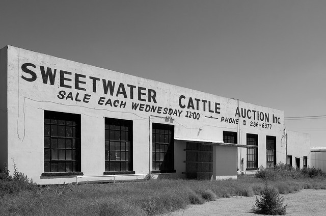 Sweetwater Cattle Auction
