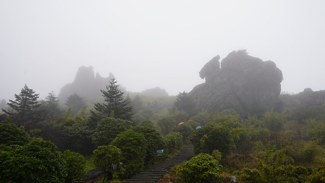 神農架 Shennongjia