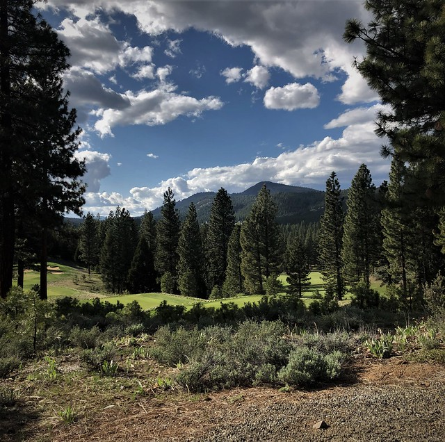 The 14th At Grizzly Ranch