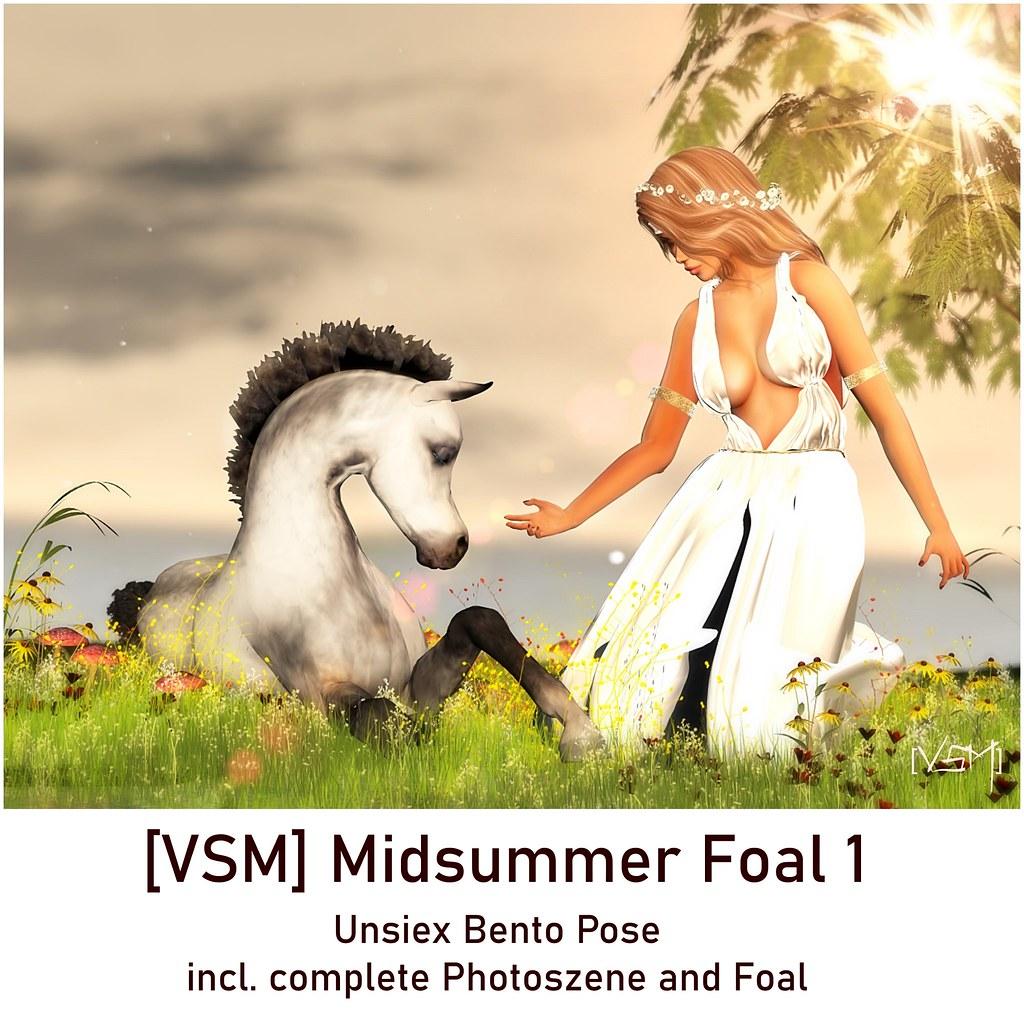 [VSM] Midsummer Foal 1