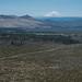 Mt. Shasta