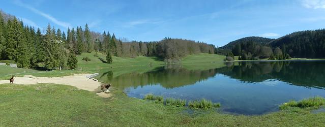 Lac Genin