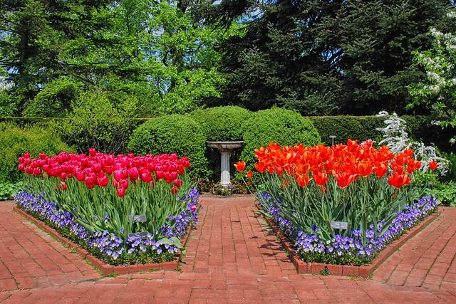 New York Botanic Garden, Bronx, New York