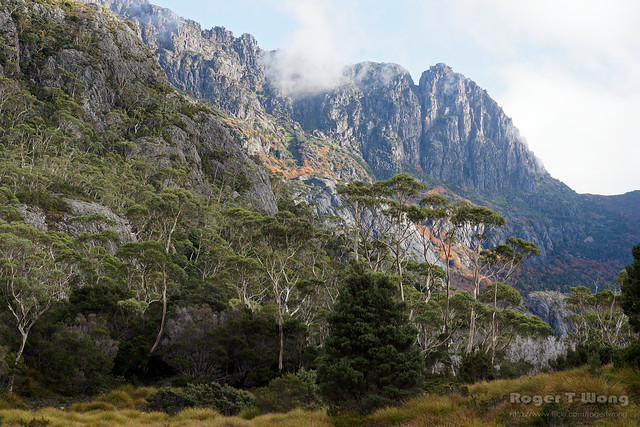 20210506-03-Back of Cradle Mountain from Lake Rodway