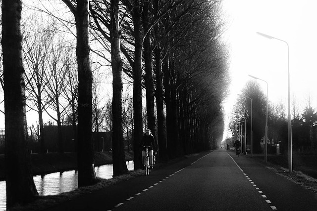 Along The Hoofdvaart Canal