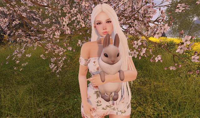 149 - Spring Day