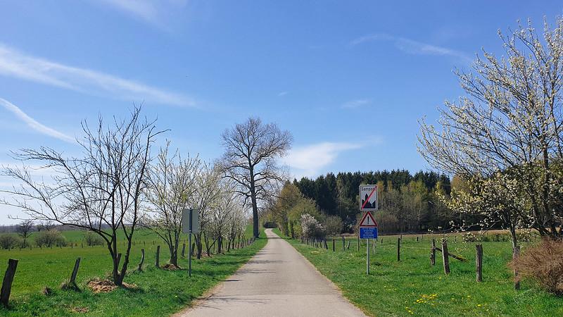 op weg naar de Romeinse weg