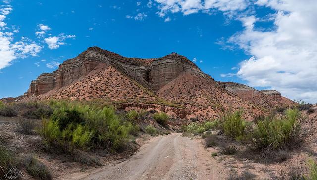 Desierto los Colorados