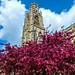 Boston Stump and Church