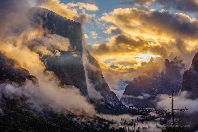 Misty Yosemite Valley Sunrise