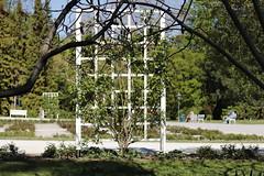 Rosengarten Park