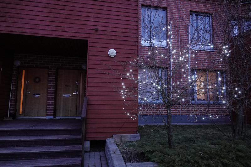 Lights Oct-May