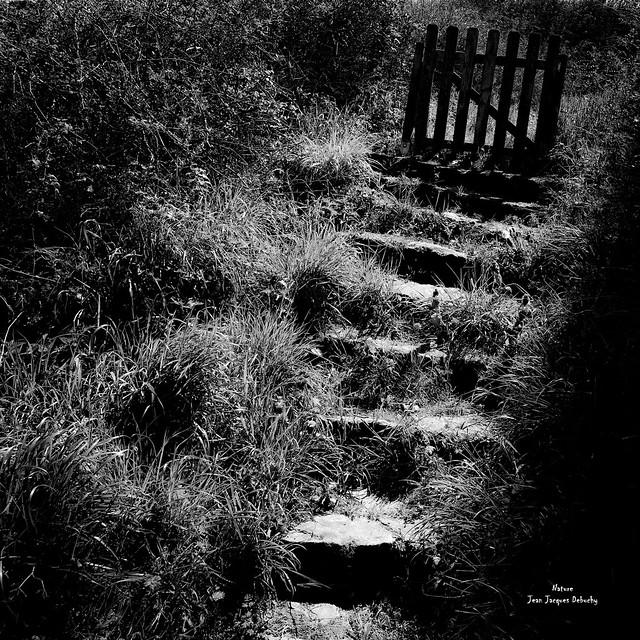 La route qui mène chez toi.