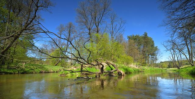 Mała Panew river, Krupski Młyn, Silesia