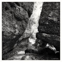 Le rocher de la Saliu00e8re