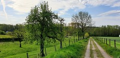 Schinnen, Limburg