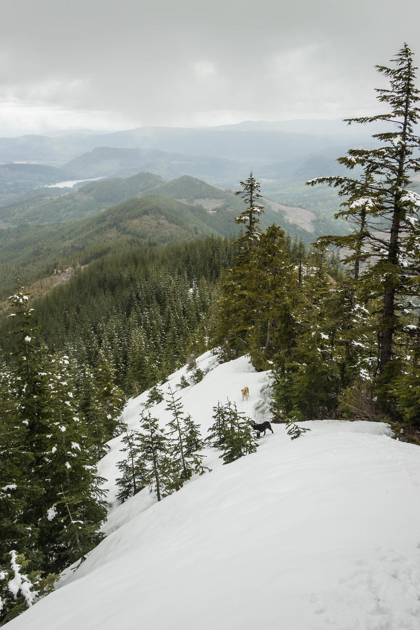 Leaving Storm King Mountain