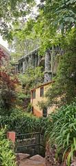 Monte Gardens, Madeira Island