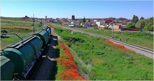 El tren llega