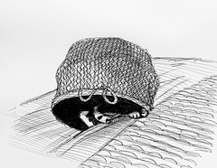 Jenkins new place to have a nap today. I found him inside the empty laundry basket fast asleep. So drew this ballpoint sketch of him. I finished the drawing and he was still asleep inside until dusk.
