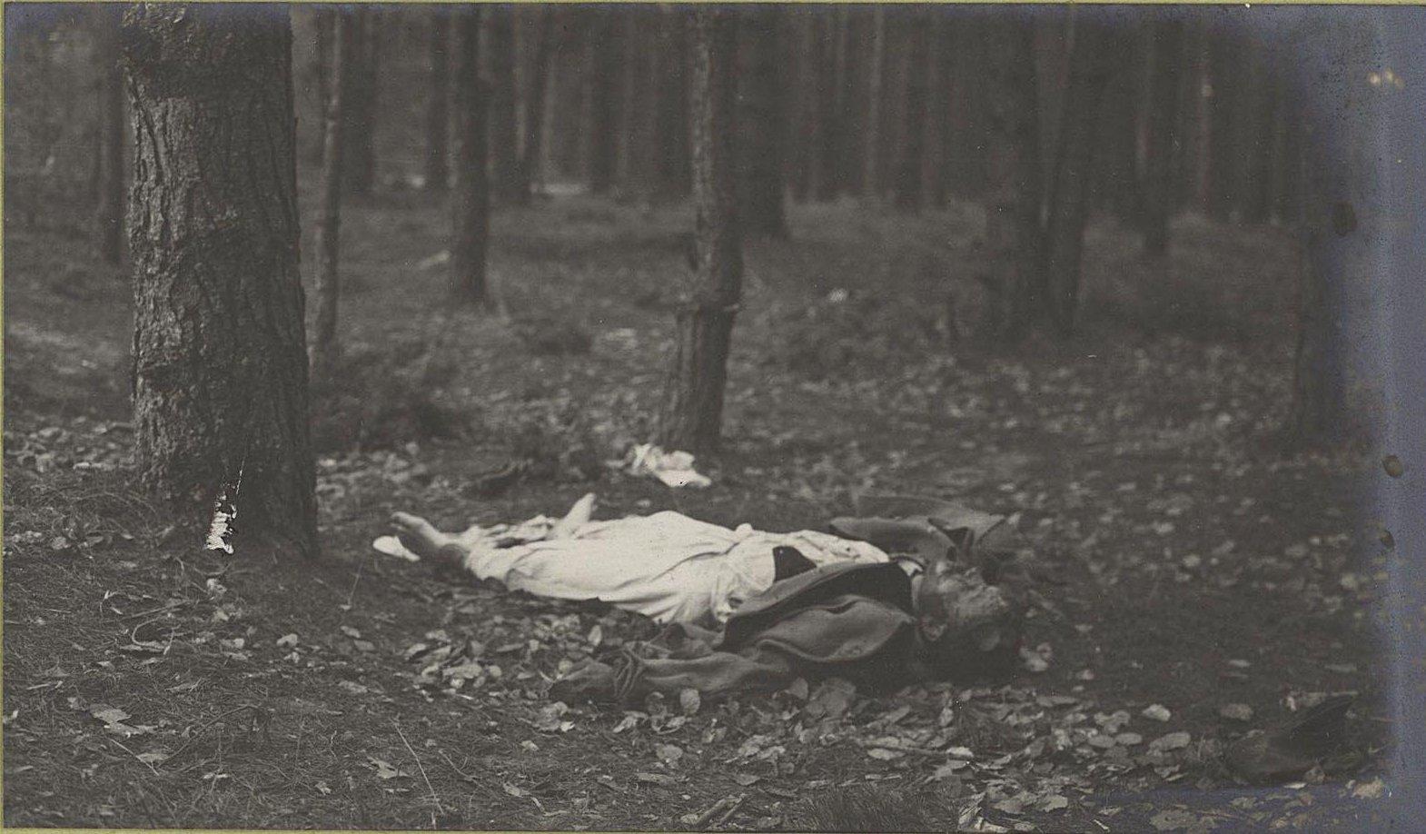 131. Трупы австрийцев нижних чинов, погибших при отступлении германцев от Вислы, в Августовском лесу у Козениц