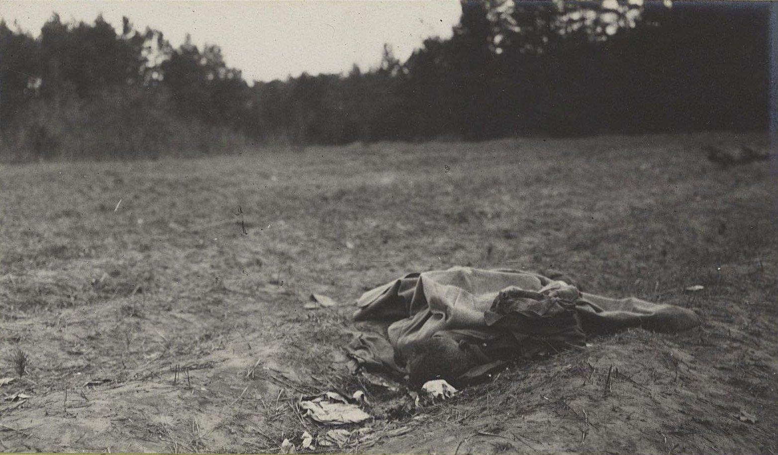 130. Трупы австрийцев нижних чинов, погибших при отступлении германцев от Вислы, в Августовском лесу у Козениц