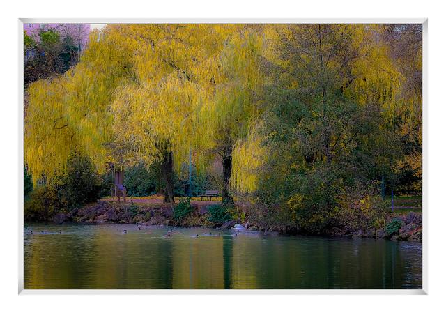 l automne au bord de l eau