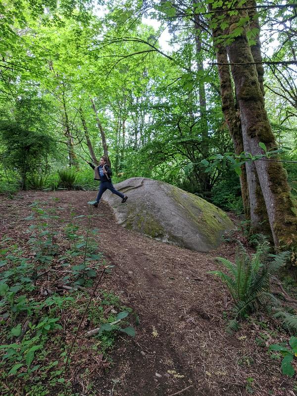 Big Finn Hill Park Rocks