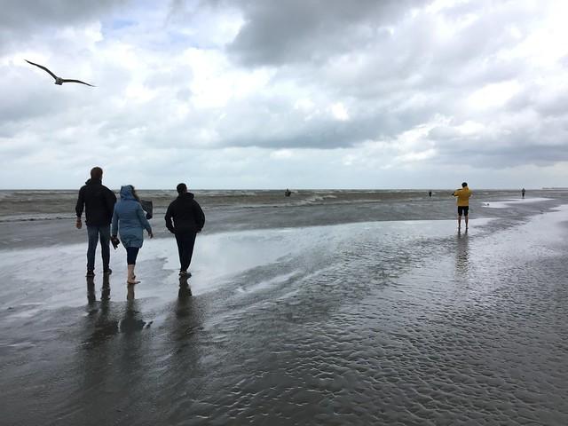 North see beach where shrimp fishing with Belgian horses tradition since the 1500 , Martin's photographs , Oostduinkerke , now Koksijde , West Vlaanderen , West Flanders , Belgium June 8. 2019 ( en.m.wikipedia.org/wiki/Oostduinkerke)