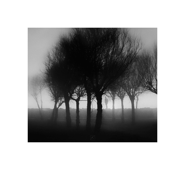 Cinematic series / Shadows of the Fog