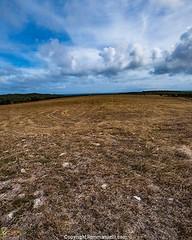 Fincas de Lajas #landscape #paisajes #lajas by Rolando Emmanuelli Jimu00e9nez #remmanuelli