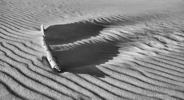 Stick Stuck In Sand!    ... HMM!