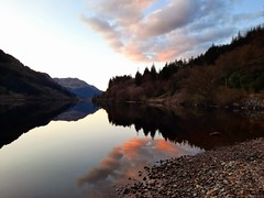 Cowal from 29 Apr 21