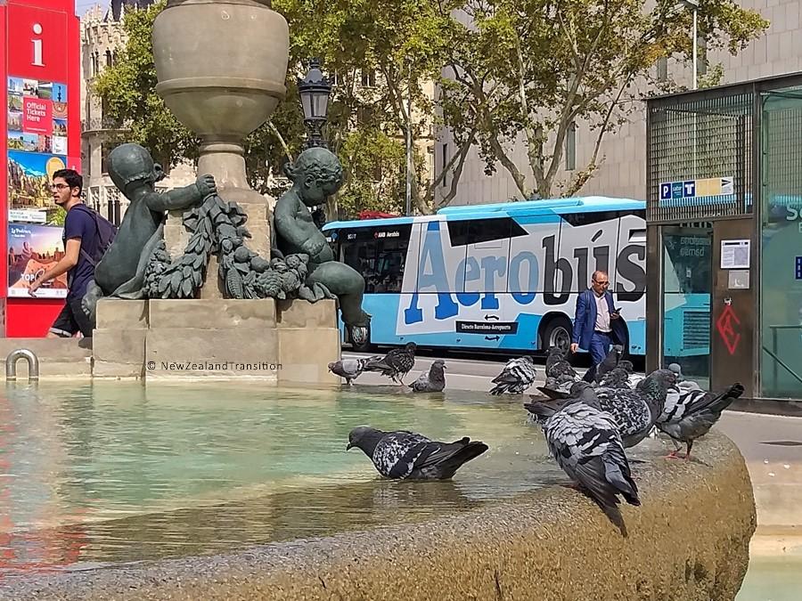 pigeons standing on edge of Fountain at Placa de Catalunya in Barcelona, Spain