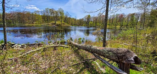 Trail Wood Sanctuary