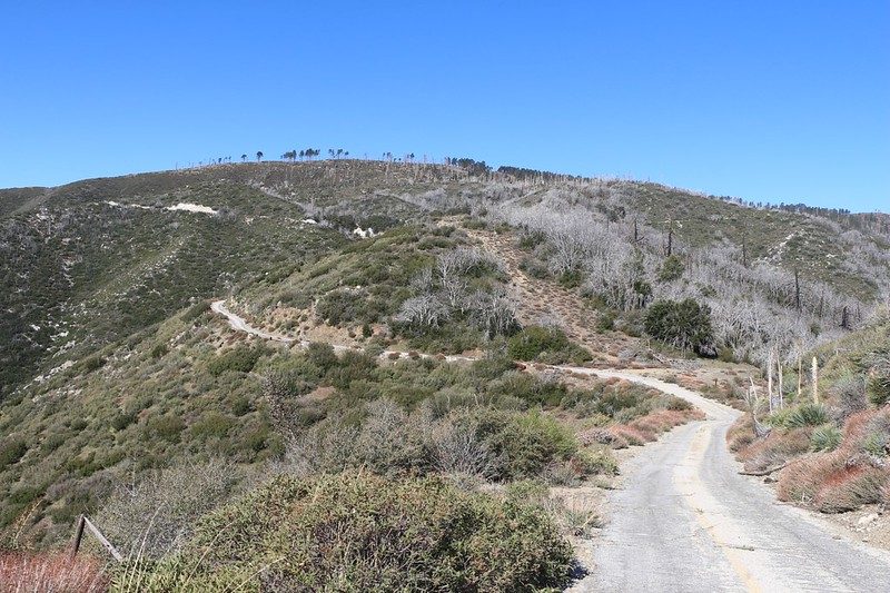 We continued west on Mount Gleason Road and began climbing Mount Gleason itself - the PCT goes to the right