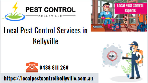 Local Pest Control  Service in Kellyville