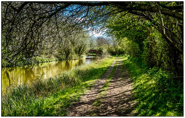Towpath trails