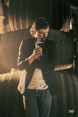 Wine cellar twilight