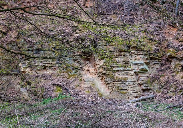 Hiking - Tegernheim