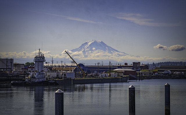 Mt. Rainier in the morning as seen from Thea's Park (that's the name of the park!) in Tacoma, Washington