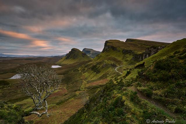 Sueños de Escocia