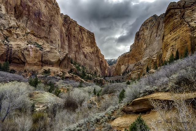 the valley between Paria Point and Beatty Point Mnts. in Kolob Canyons, Utah