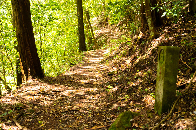 日金山ハイキングコースと石仏