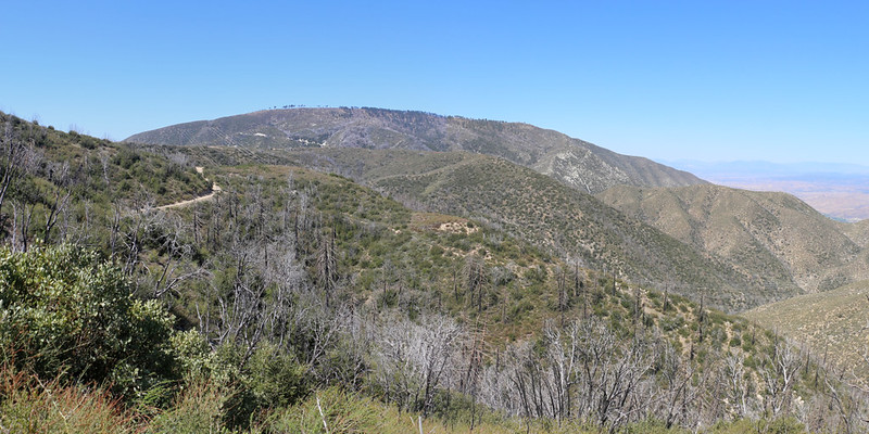 Mount Gleason with Beartrap Canyon Road below us