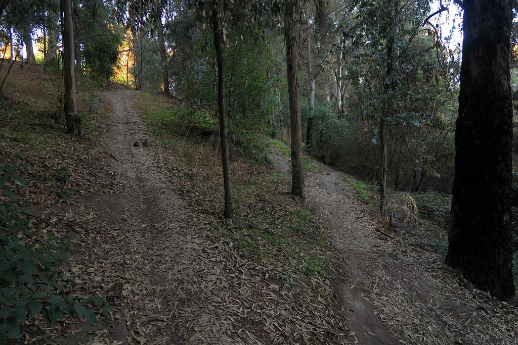 cerro sendero (3)