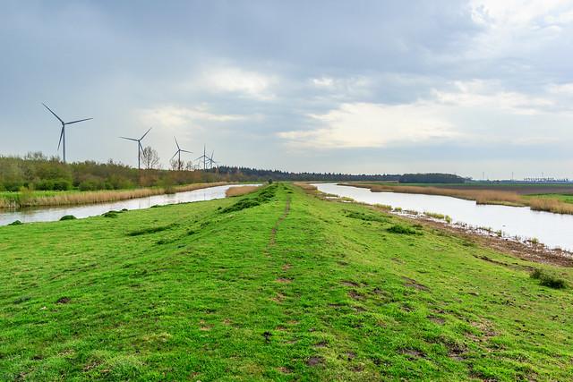 Oostelijke ringdijk polder Waard-Nieuwland